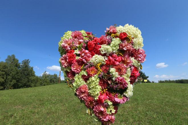 Įsimylėjusiųjų diena Naisiuose
