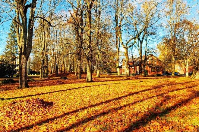 Bubiai Manor Park