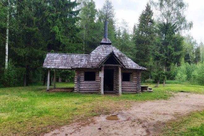 Gulbino miško poilsiavietė