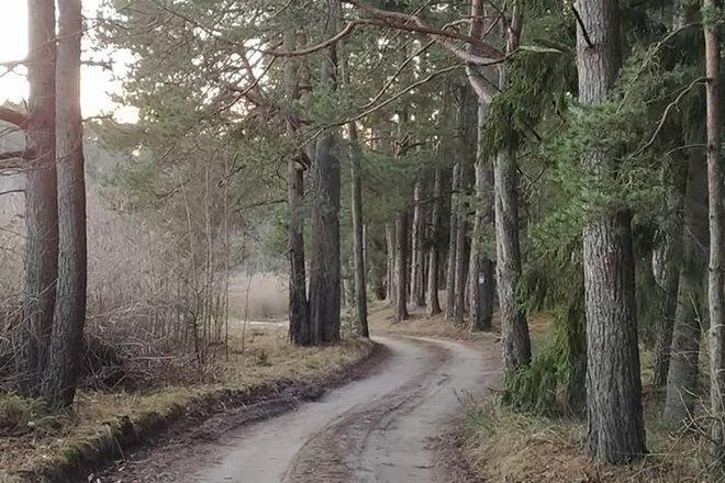 Juodlė trail