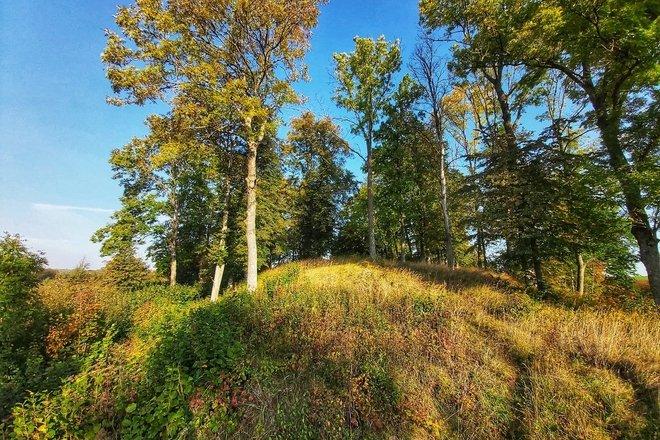 Romučiai (Ramučiai) mound