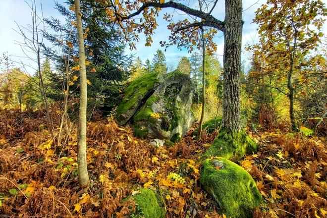 Urkuvėnų akmuo